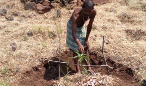 rural community development initiative